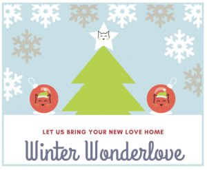 flier for winter wonderlove