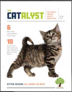 spring magazine cover