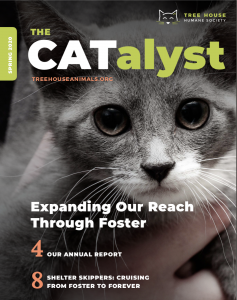 Catalyst spring 2020 cover