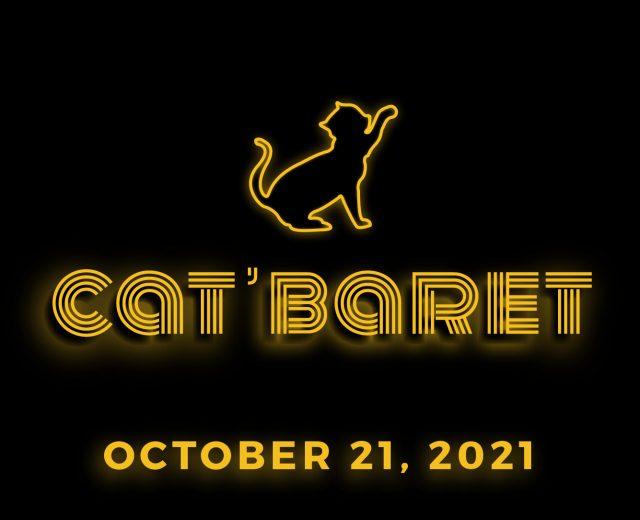 Catbaret digital_1600x350 Page Banner
