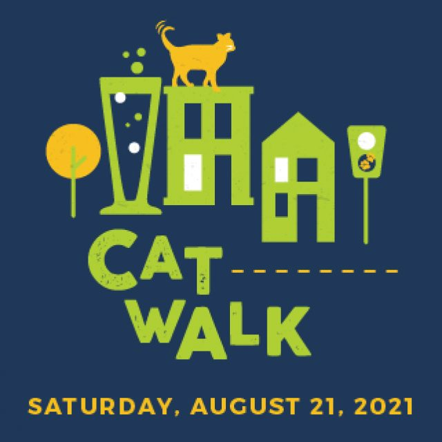 Catwalk digital_1600x550 Home Slide